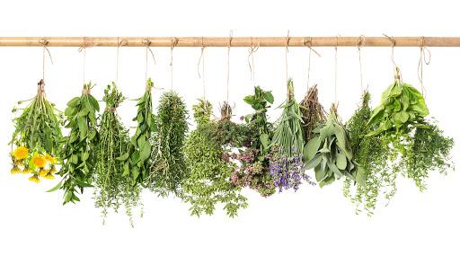 hogyan készítsünk gyógynövények főzetét a pikkelysömörhöz)